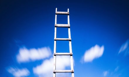 Climbing the (Wrong) Ladder