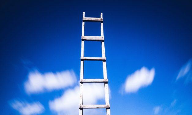 Climbing the (Wrong) Ladder