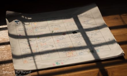 My Amateur Memory Grid
